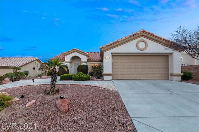 11017 Hawk Valley Avenue, Las Vegas, NV 89134 (MLS #2272648) :: Custom Fit Real Estate Group