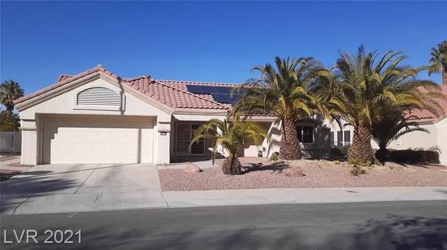 8924 Mountain Gate Drive, Las Vegas, NV 89134 (MLS #2273652) :: Jeffrey Sabel