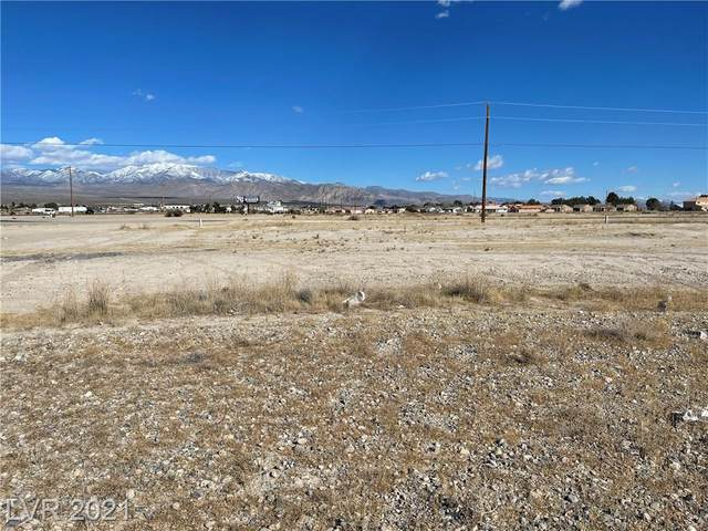 1051 Valerie Avenue, Pahrump, NV 89048 (MLS #2279397) :: Signature Real Estate Group