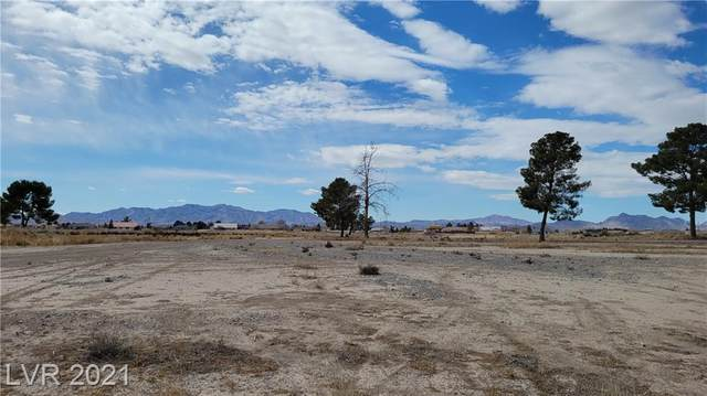 1960 Waterhole Canyon Avenue, Pahrump, NV 89048 (MLS #2280210) :: Signature Real Estate Group