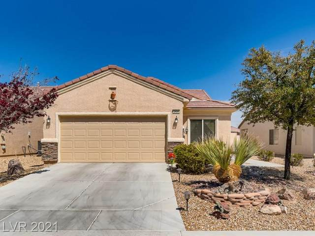 2404 Garganey Avenue, North Las Vegas, NV 89084 (MLS #2281909) :: Signature Real Estate Group