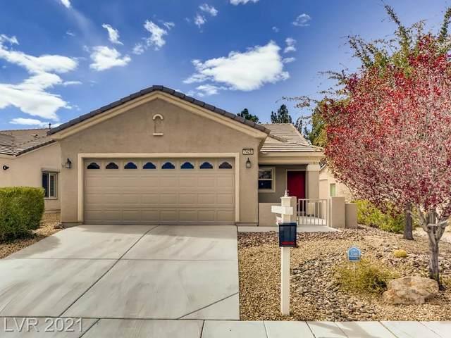7425 Petrel Street, North Las Vegas, NV 89084 (MLS #2282198) :: Signature Real Estate Group