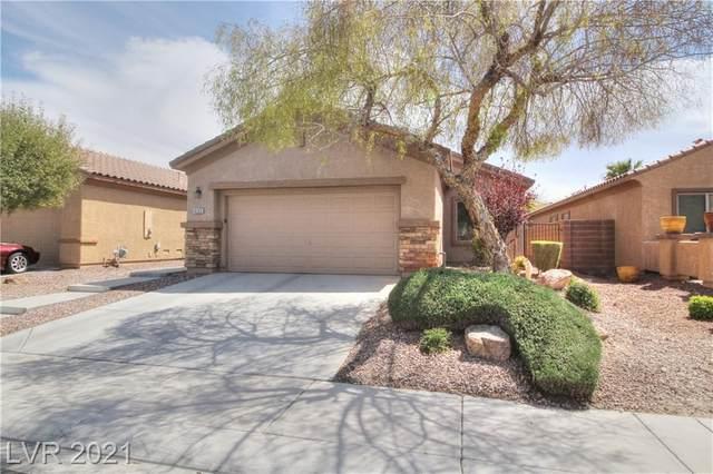 4125 Gliding Gulls Avenue, North Las Vegas, NV 89084 (MLS #2285447) :: Signature Real Estate Group