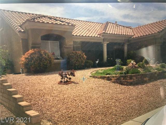 9833 Button Willow Drive, Las Vegas, NV 89134 (MLS #2285609) :: Signature Real Estate Group