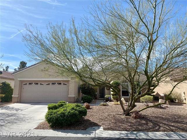 2549 Downeyville Avenue, Henderson, NV 89052 (MLS #2285664) :: Signature Real Estate Group