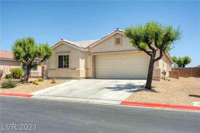6664 Arctic Breeze Street, North Las Vegas, NV 89084 (MLS #2285896) :: Signature Real Estate Group