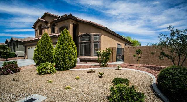 2892 Jamie Rose Street, Las Vegas, NV 89135 (MLS #2286000) :: Signature Real Estate Group