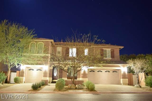 9195 National Park Drive, Las Vegas, NV 89178 (MLS #2287466) :: Billy OKeefe | Berkshire Hathaway HomeServices