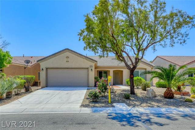 3219 Kingbird Drive, Las Vegas, NV 89084 (MLS #2287547) :: Billy OKeefe | Berkshire Hathaway HomeServices