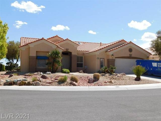 10609 Sky Meadows Avenue, Las Vegas, NV 89134 (MLS #2288070) :: Signature Real Estate Group