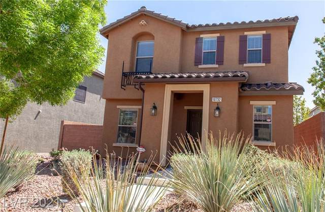 10732 Mystic Shore Avenue, Las Vegas, NV 89166 (MLS #2288552) :: ERA Brokers Consolidated / Sherman Group