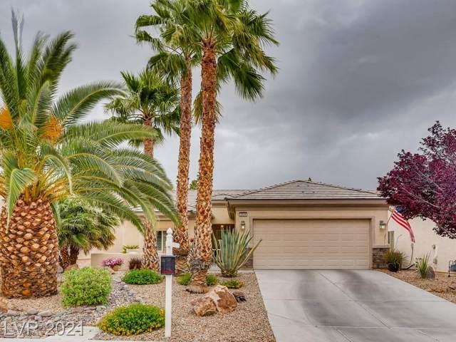 2524 Lark Sparrow Street, North Las Vegas, NV 89084 (MLS #2289553) :: Signature Real Estate Group