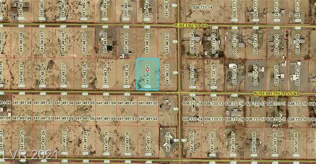 4550 W Medicine Man Road, Pahrump, NV 89048 (MLS #2290229) :: Lindstrom Radcliffe Group