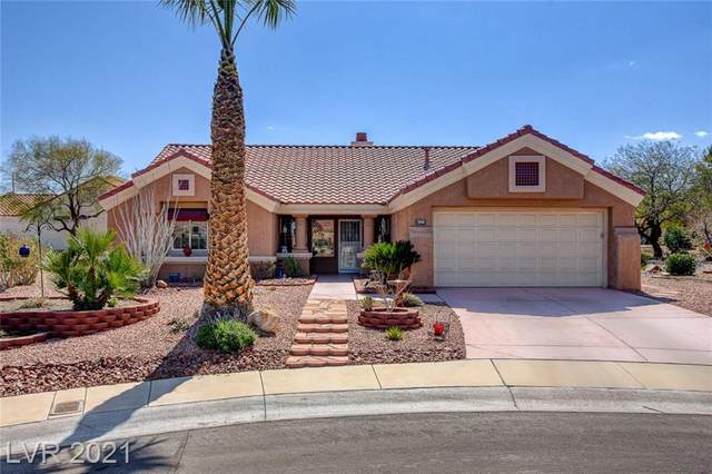 8505 Silkwood Court, Las Vegas, NV 89134 (MLS #2290573) :: Signature Real Estate Group