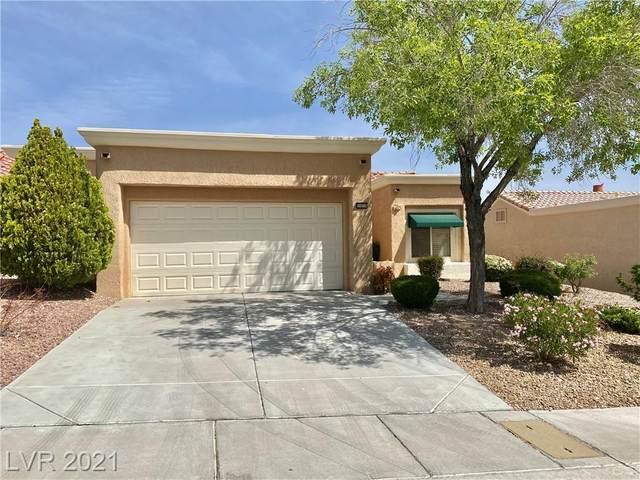 10036 Bundella Drive, Las Vegas, NV 89134 (MLS #2290725) :: Custom Fit Real Estate Group