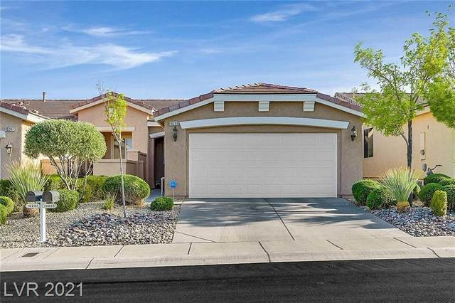 10255 Villa Arceno Avenue, Las Vegas, NV 89135 (MLS #2290835) :: Custom Fit Real Estate Group