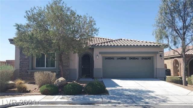 7131 Sunny Countryside Avenue, Las Vegas, NV 89179 (MLS #2293563) :: Jeffrey Sabel