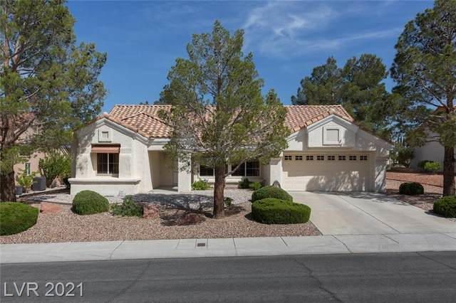 2736 Crown Ridge Drive, Las Vegas, NV 89134 (MLS #2293955) :: Signature Real Estate Group