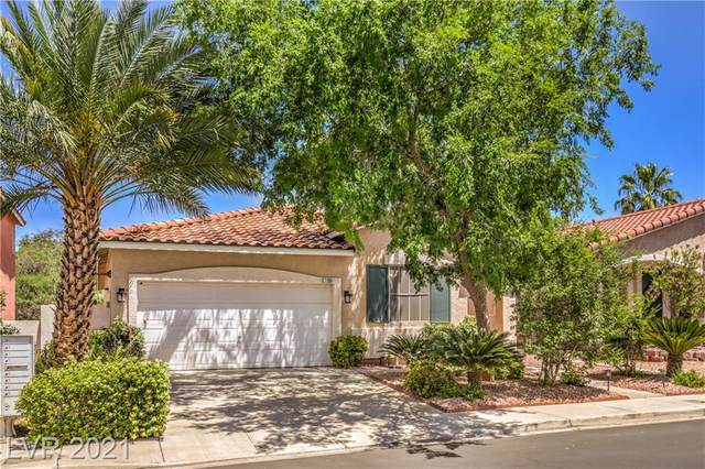 2290 Chestnut Bluffs Avenue, Henderson, NV 89052 (MLS #2294061) :: Custom Fit Real Estate Group