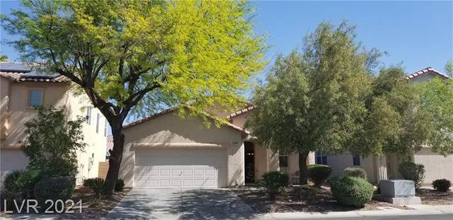 3384 Famiglia Drive, Las Vegas, NV 89141 (MLS #2294249) :: Jack Greenberg Group