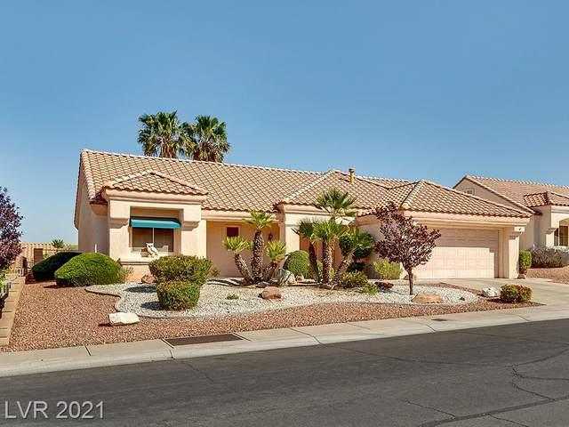 2728 Lotus Hill Drive, Las Vegas, NV 89134 (MLS #2294348) :: Signature Real Estate Group