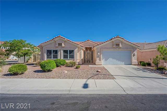 8644 Stone Harbor Avenue, Las Vegas, NV 89145 (MLS #2295226) :: Lindstrom Radcliffe Group