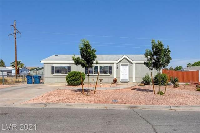 728 Mormon Peak Street, Overton, NV 89040 (MLS #2296099) :: Jeffrey Sabel