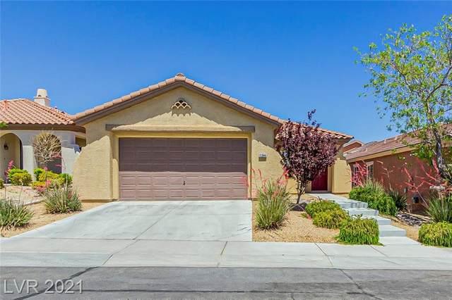 11244 Hilltop View Lane, Las Vegas, NV 89138 (MLS #2297484) :: The Chris Binney Group | eXp Realty
