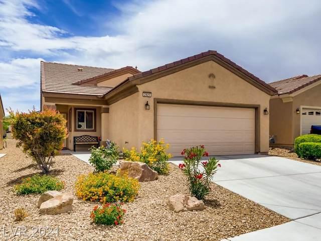 2925 Ground Robin Drive, North Las Vegas, NV 89084 (MLS #2297800) :: ERA Brokers Consolidated / Sherman Group