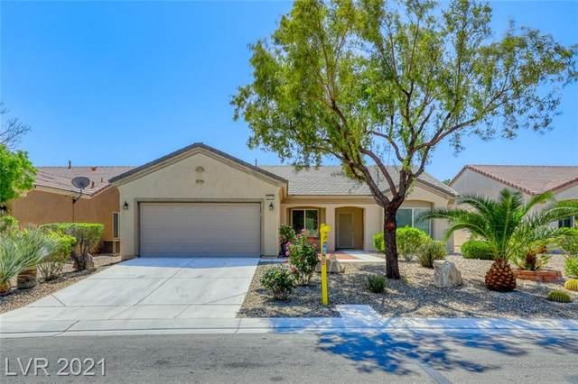 3219 Kingbird Drive, Las Vegas, NV 89084 (MLS #2299335) :: ERA Brokers Consolidated / Sherman Group