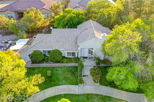 10240 Bath Drive, Las Vegas, NV 89149 (MLS #2302129) :: Signature Real Estate Group