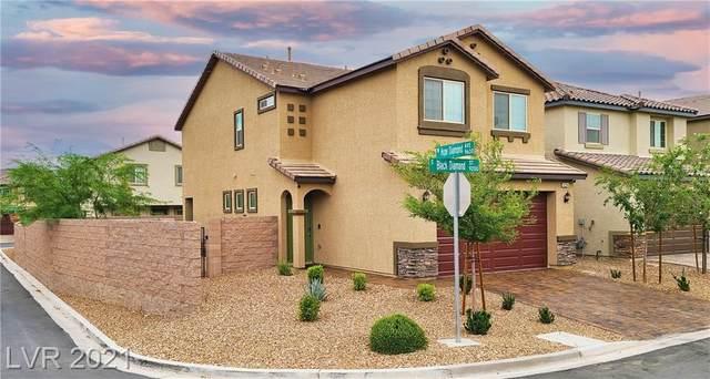 9234 Black Diamond Street, Las Vegas, NV 89178 (MLS #2302750) :: Hebert Group   Realty One Group