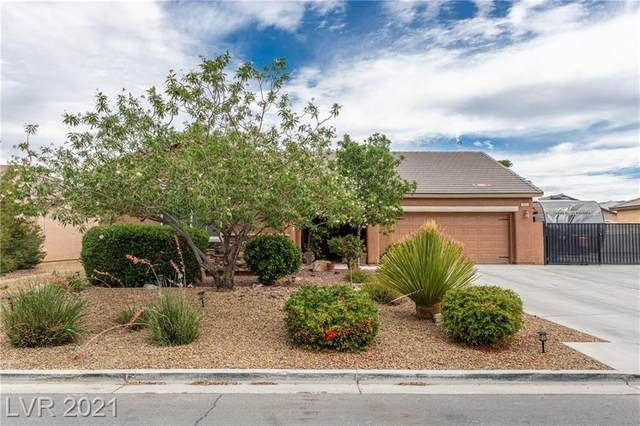 3924 E Chaffe Avenue, Pahrump, NV 89061 (MLS #2302767) :: Signature Real Estate Group