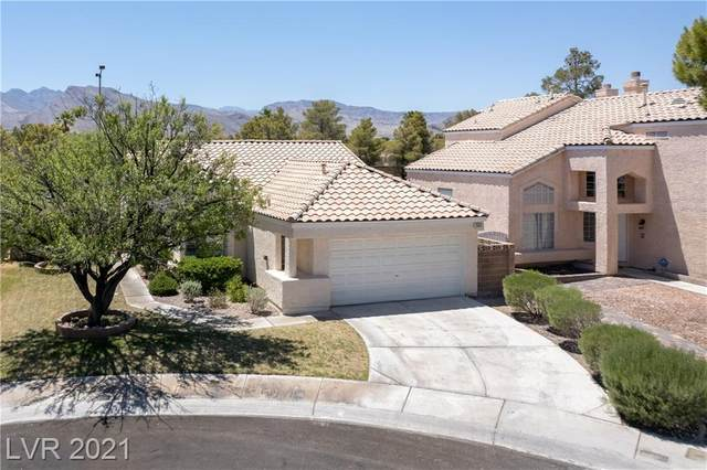 3053 Anchor Chain Drive, Las Vegas, NV 89128 (MLS #2303364) :: Jack Greenberg Group