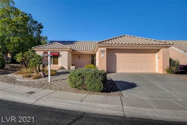 10504 Linden Wood Court, Las Vegas, NV 89134 (MLS #2304327) :: Lindstrom Radcliffe Group