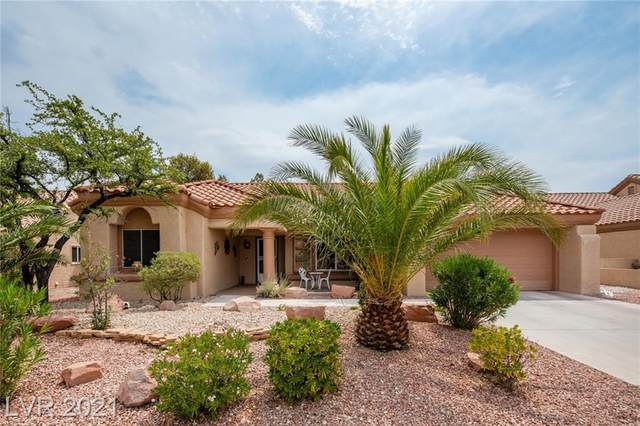 3016 Morning Ridge Drive, Las Vegas, NV 89134 (MLS #2304690) :: Signature Real Estate Group