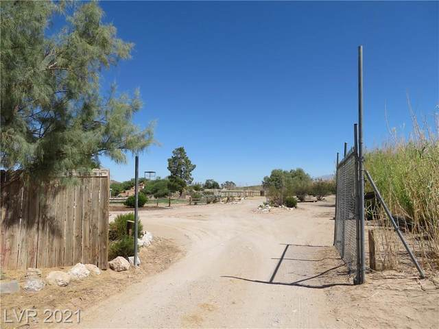 Borax, Sandy Valley, NV 89019 (MLS #2305793) :: Vestuto Realty Group