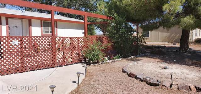 3140 S Fallwood Street, Pahrump, NV 89048 (MLS #2305993) :: DT Real Estate