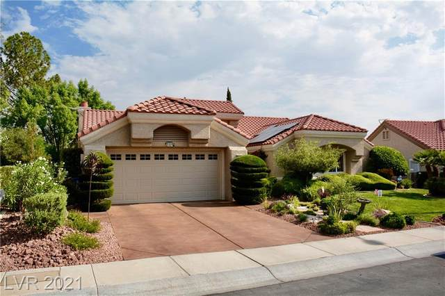 8508 Stan Crest Drive, Las Vegas, NV 89134 (MLS #2306514) :: Signature Real Estate Group