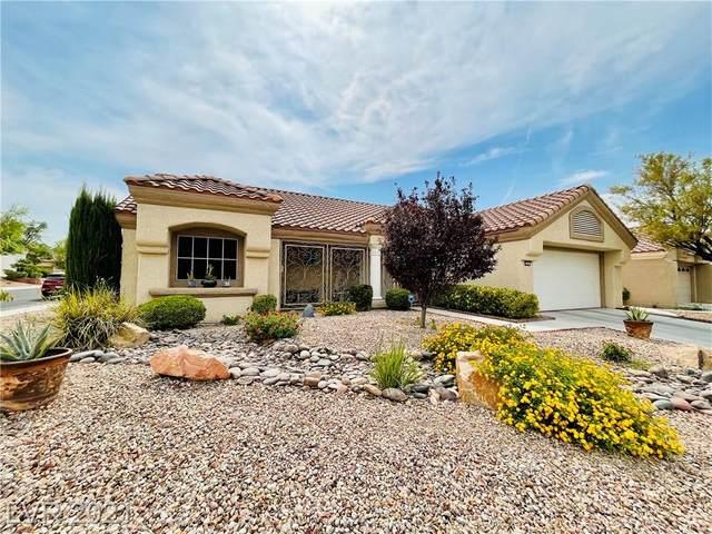 2501 Palmridge Drive, Las Vegas, NV 89134 (MLS #2306525) :: Signature Real Estate Group
