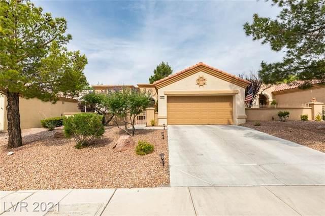 2005 Sun Cliffs Street, Las Vegas, NV 89134 (MLS #2306662) :: Signature Real Estate Group