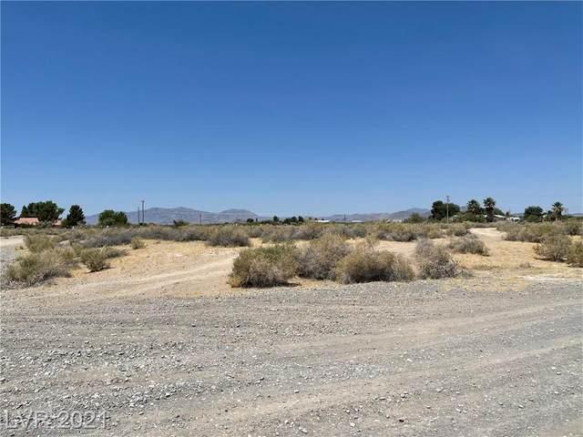 300 Polo Lane, Pahrump, NV 89060 (MLS #2306682) :: DT Real Estate