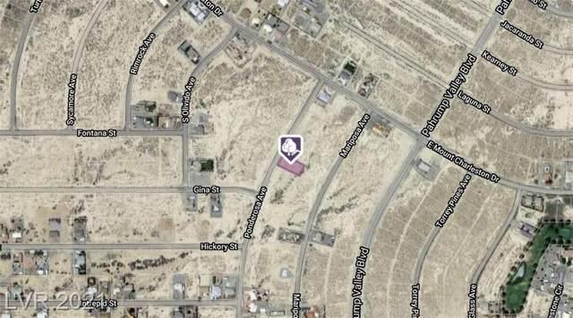 2701 Ponderosa Avenue, Pahrump, NV 89048 (MLS #2306920) :: DT Real Estate