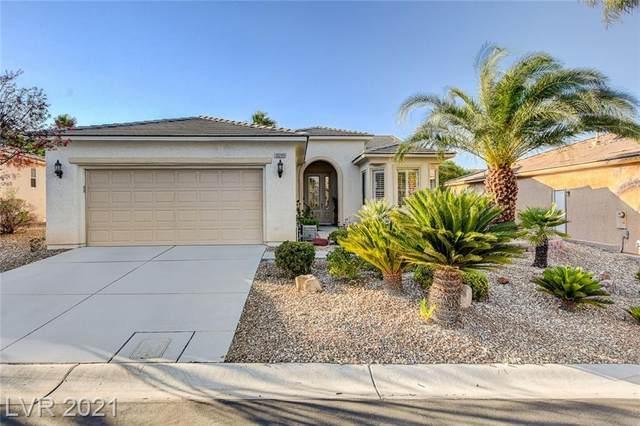 10240 Notte Avenue, Las Vegas, NV 89135 (MLS #2307536) :: Galindo Group Real Estate