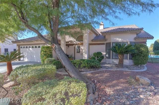 5624 Ocean Pines Circle, Las Vegas, NV 89130 (MLS #2307839) :: Galindo Group Real Estate