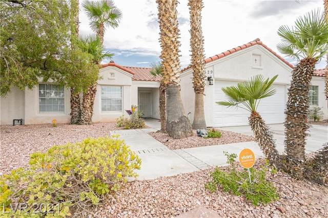 529 Craig Creek Avenue, North Las Vegas, NV 89032 (MLS #2308121) :: Signature Real Estate Group