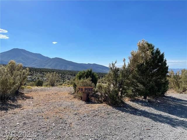 79 Pine Road, Cold Creek, NV 89124 (MLS #2308772) :: Hebert Group | Realty One Group