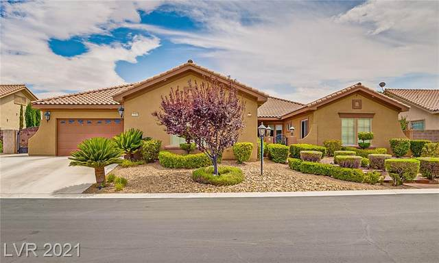 3705 Hillary Elan Court, Las Vegas, NV 89139 (MLS #2309524) :: The Chris Binney Group | eXp Realty