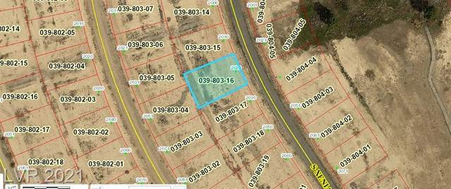 2020 S Xenia Avenue, Pahrump, NV 89048 (MLS #2311563) :: Jeffrey Sabel