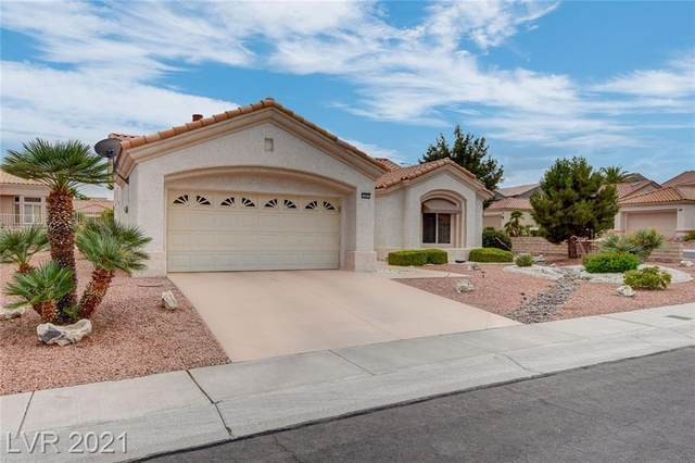 10045 Netherton Drive, Las Vegas, NV 89134 (MLS #2315869) :: DT Real Estate